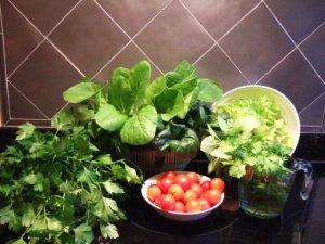 Scrumptious-veggies