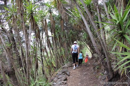 Lake-Atitlan-hike
