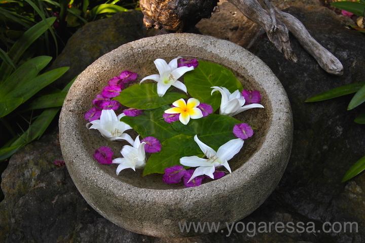 Lake-Atitlan-flowers-5774