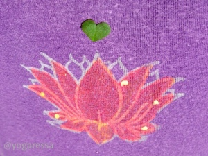 Yogaressa-lotus-heart-2798