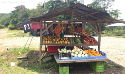 Costa-Rica-fruit-stand-0678b