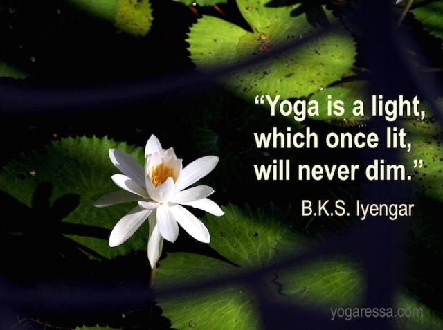 Iyengar-quote-light-yoga