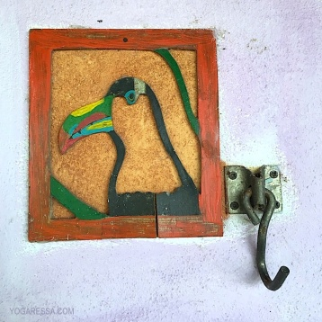IMG_0340i-costa-rica-toucan