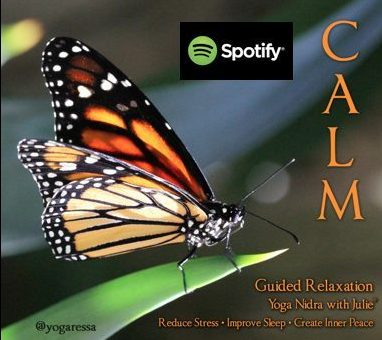 Yoga-Nidra-CALM -Spotify-Insight-Timer