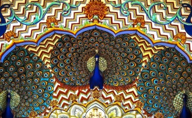 Peacocks-City-Palace-Jaipur-2