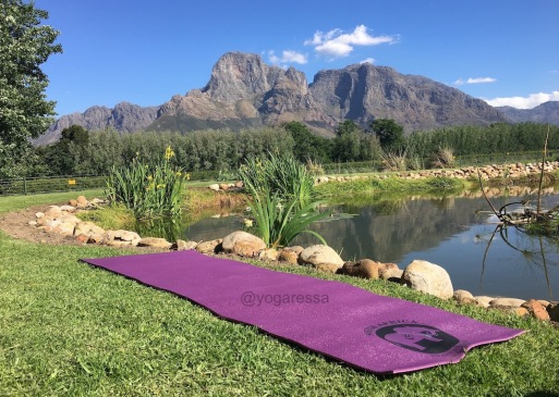 img_7928-winelands-yogaressa-south-africa-yoga-retreat